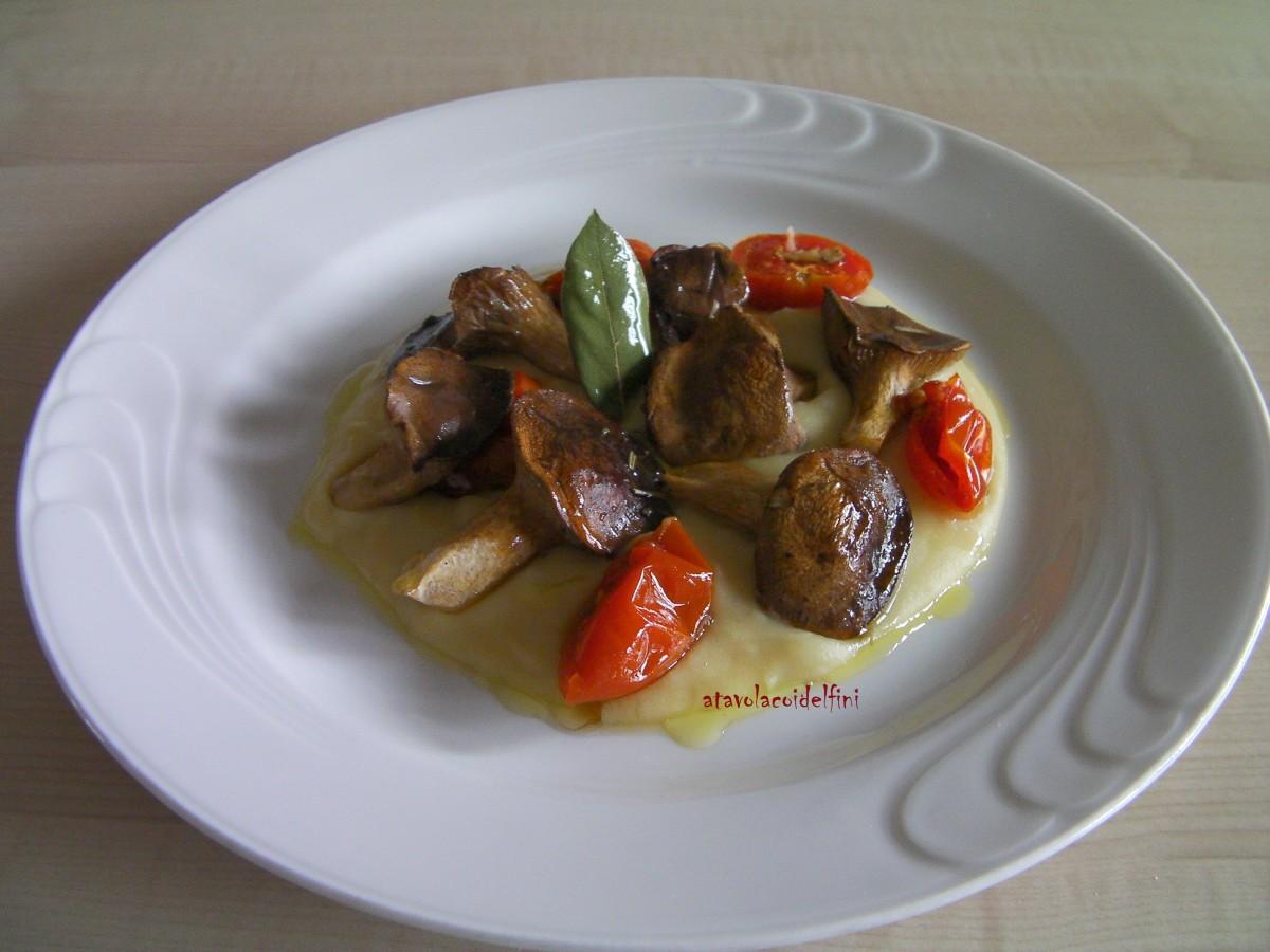 Funghi cardoncelli e pomodori d inverno su purea di fave - Bagno coi delfini ...