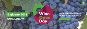 Wine Open Day - Lecce