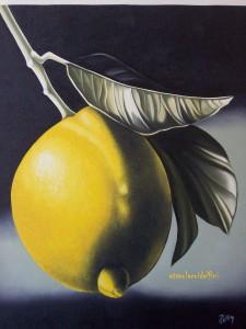 Limone - olio su tela (40x50)