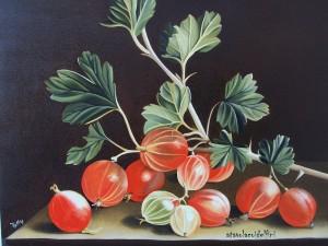 Ribes - olio su tela (40x50)