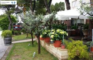 """Ristorante """"Cinque Ragazze"""" Campofilone (Fm) tel.0734 932405"""