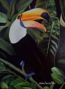 Tucano - olio su tela (50x70)