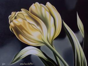 Tulipani - olio su tela (50x70)