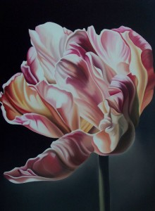 Tulipano - olio su tela (50x70)