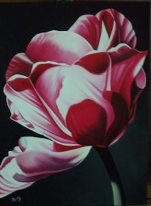 Tulipano - olio su tela (40x50)