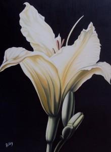 Iris - olio su tela (60x80)