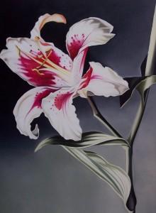 Lilium - olio su tela (50x70)