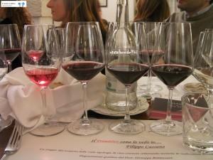 Vini Polvanera - Primitivo Gioia del Colle Doc