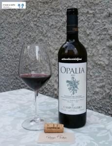 """Opalia"" Tintilia del Molise Doc 2010 - Campi Valerio"