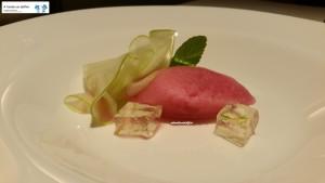 Sorbetto al melograno, mela verde e gelatina al gin tonic