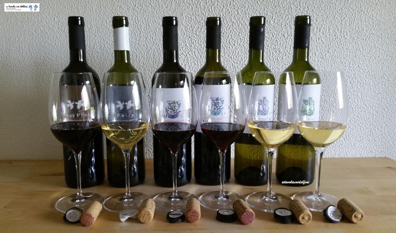 Caric Winery – Isola di Hvar, Dalmazia – Croazia