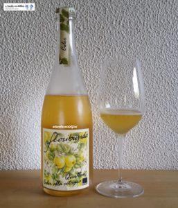 Floribunda - Salorno (Bz)
