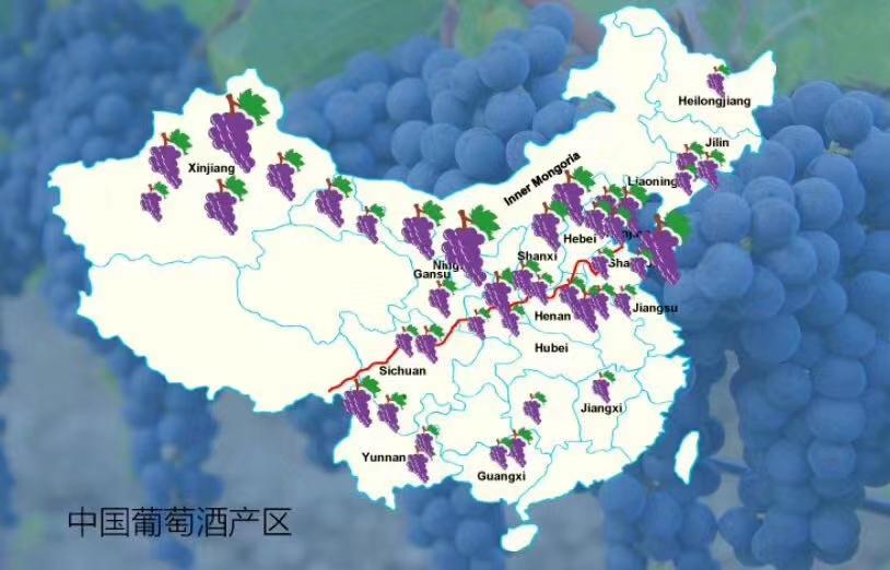La Via del vino Cinese