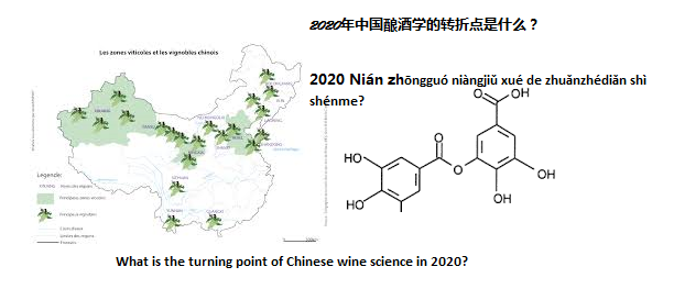 Il vino naturale in Cina